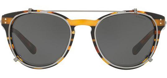 00eb01e817 Coach Women s Black Amber Glitter Varsity Stripe Sunglasses - HC8216 544087  51